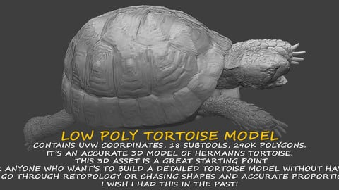 TORTOISE LOW POLY 3D MODEL