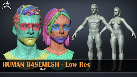 Human Basemeshes - LowRes