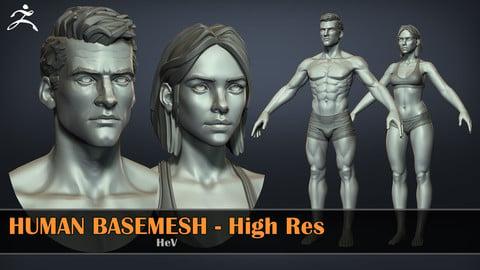 Human Basemeshes - HighRes