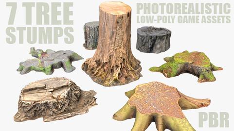 7 TREE STUMPS