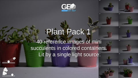 Plant Pack 1