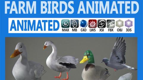Pack – Farm Birds Animated