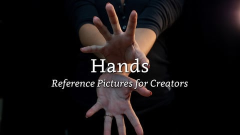 Hands - Reference Pictures for Creators
