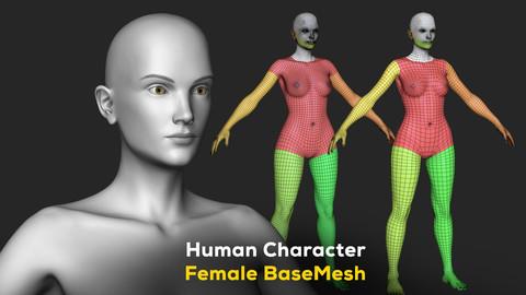 Human Character Female BaseMesh - Woman Body