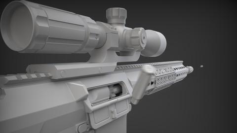 SR 25 Sniper Rifle