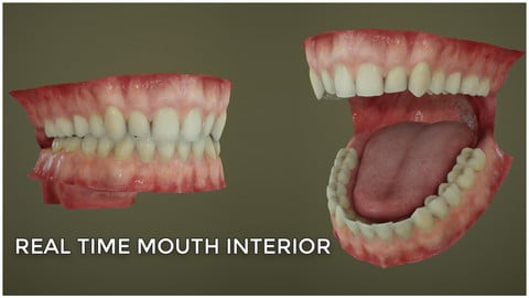 Real time mouth interior