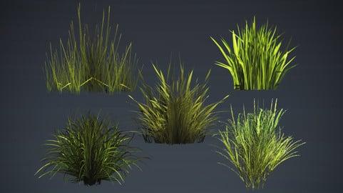 Grass kit pack