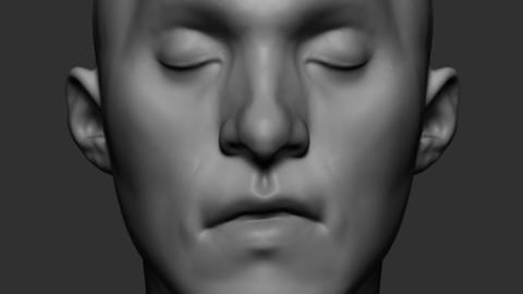 Stylized Male Head