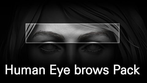 Human Eyebrows Pack