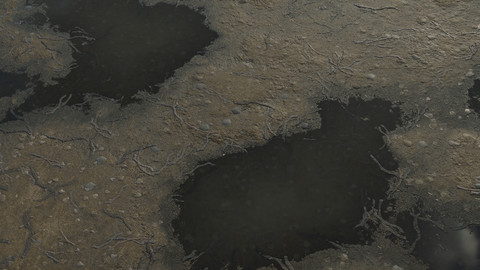 Ground_Dirt with twigs+stones Full PBR Material