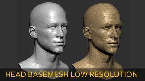 Male Head BaseMesh Low Resolution