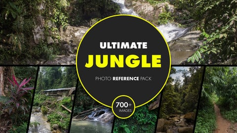 Ultimate Jungle photo reference pack