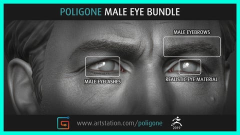 Poligone Male Eye Bundle
