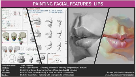 Painting facial features: Lips