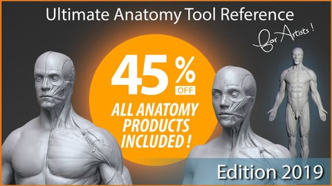 Ultimate Anatomy Tool Reference for Artists !