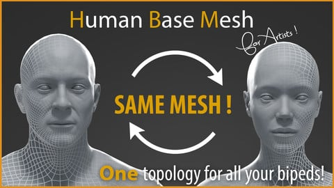 Human Base Mesh for artists !