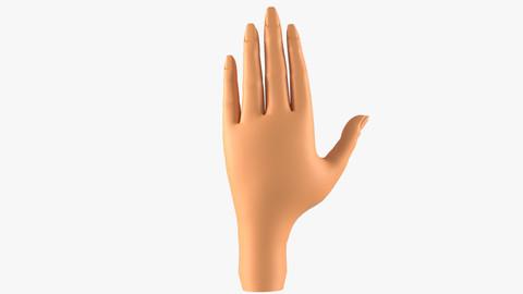 Girl Hand 3D Model Base Mesh