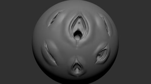 Female Vaginal And Anal Brush anatomy for Zbrush