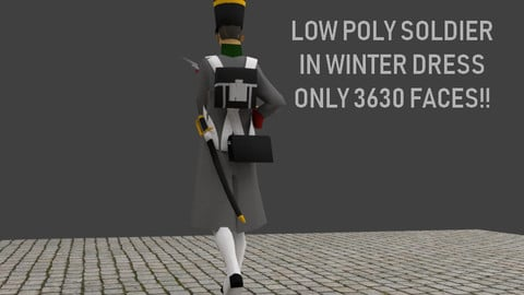 Napoleonic soldier with Winter Coat