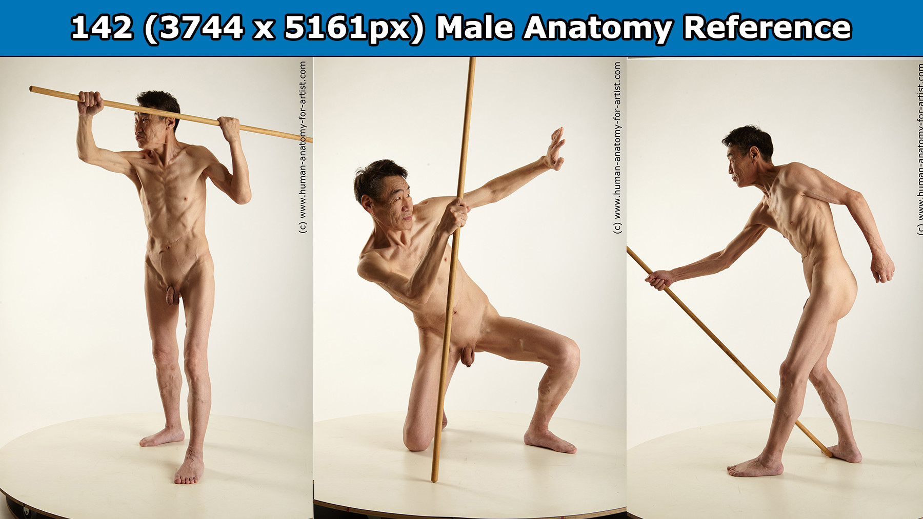 Adam Winters - Male Anatomy Fighting Reference pack #18