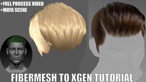 Male Fibermesh hair to Xgen Interactive Grooming Tutorial