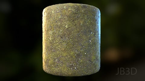 Mossy Ground | Photogrammetry PBR Textures