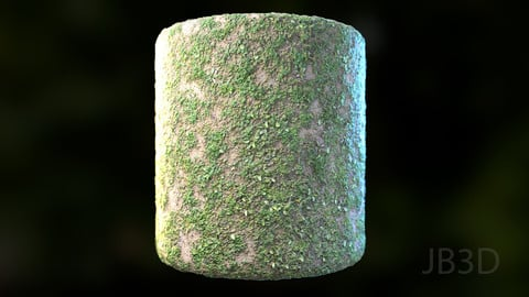 Ground Dirt with Plants | Photogrammetry PBR Textures