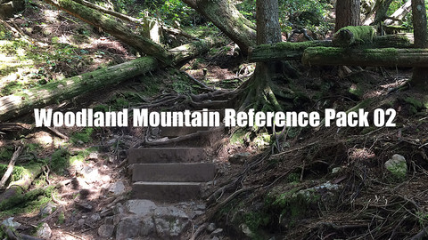 Woodland Mountain Reference Pack 02