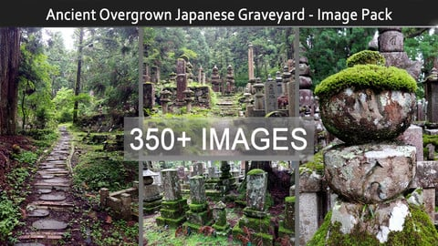 Ancient Overgrown Japanese Graveyard - Image Pack (350+)