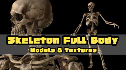 Skeleton FullBody Models&Textures