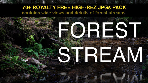 forest stream photopack