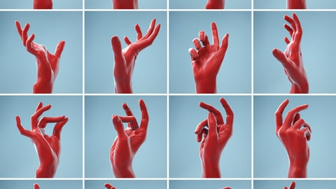 13 Single Hand Poses