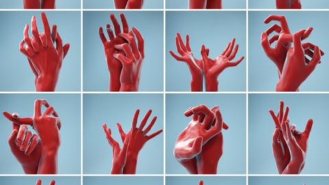 11 Interacting Hands