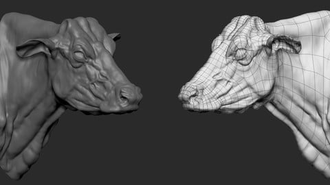 Cow bust base mesh