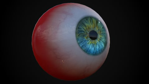 Reel time eyeball