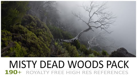 MISTY DEAD WOODS PACK