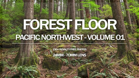 Forest Floor - Pacific NorthWest - Volume 01
