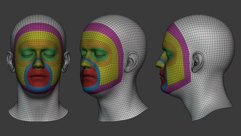 Base Mesh optimized for Facial Rigging