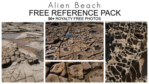 Free Reference Pack - Alien Beach - Royalty Free Photos