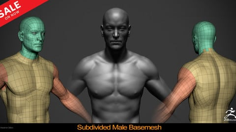 Male Basemesh - Subdivided
