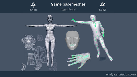 Game basemeshes (rigged body)