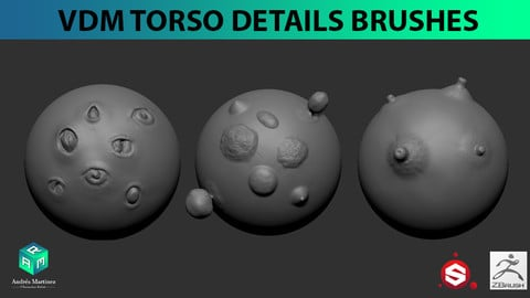VDM Torso Details Brush Pack