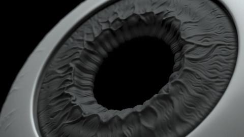 High Poly Eye