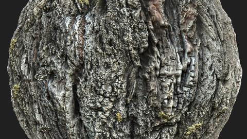 Tree Bark 5 Material Pack