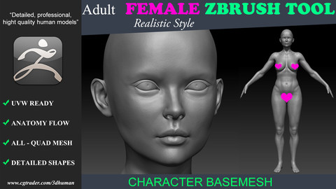 Zbrush tool-Low poly Basemesh Adult Female 191110