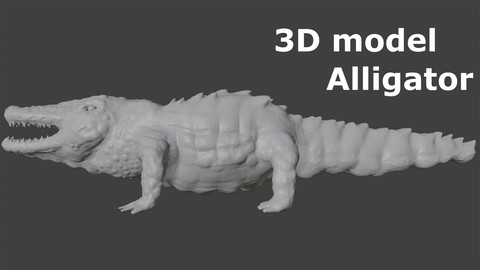 3D model Alligator