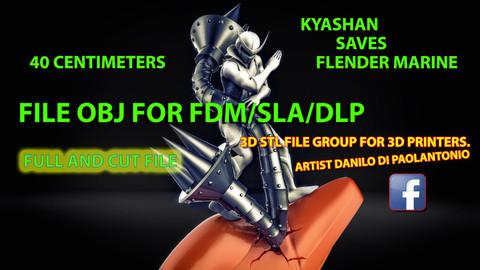 OFFER! KYASHAN SAVES FLENDER MARINE - FILE OBJ FOR PRINTERS FDM - DLP - SLA 3D