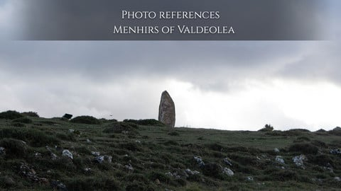 Photo reference: Menhirs of Valdeolea