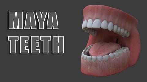 Mouth, Tongue and Teeth