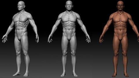 Base Male (12K Triangles) for video game production character design (5 subdivisions